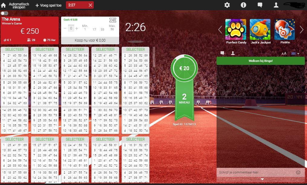 bingo spelen voor echt geld